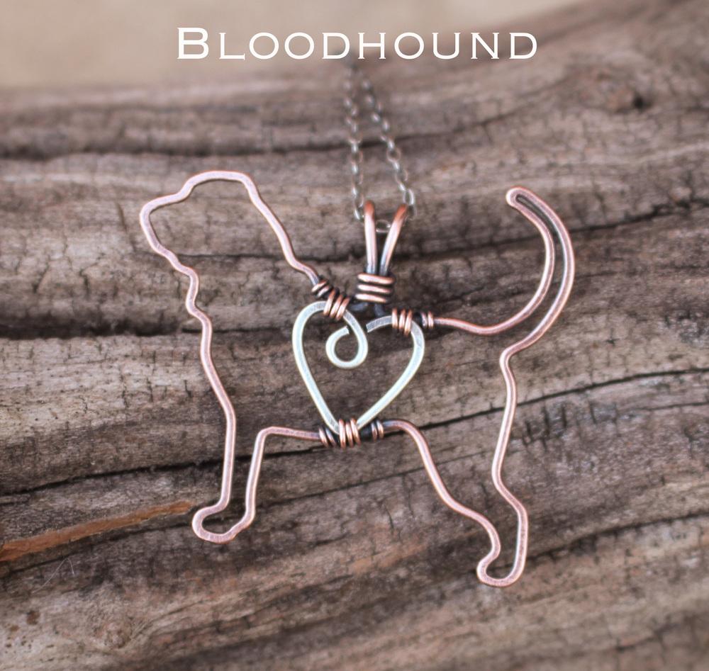 bloodhound1.jpg