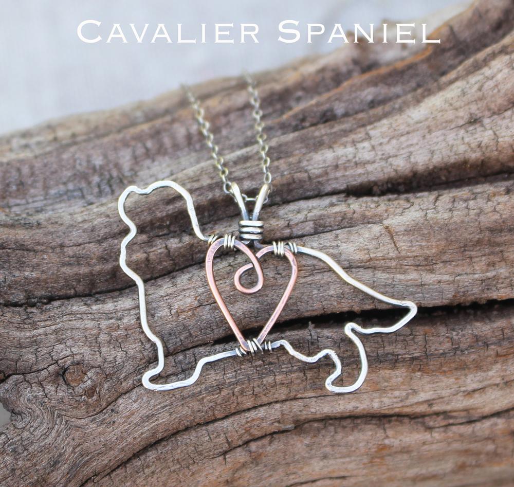 cavalier spaniel.jpg