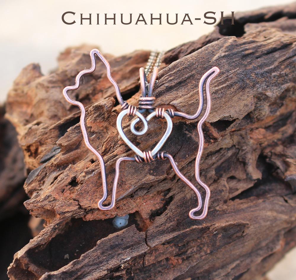 Chihuahua-sh.jpg