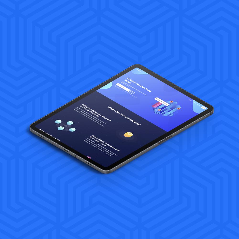 Velocity Network Concept, Branding, and Website