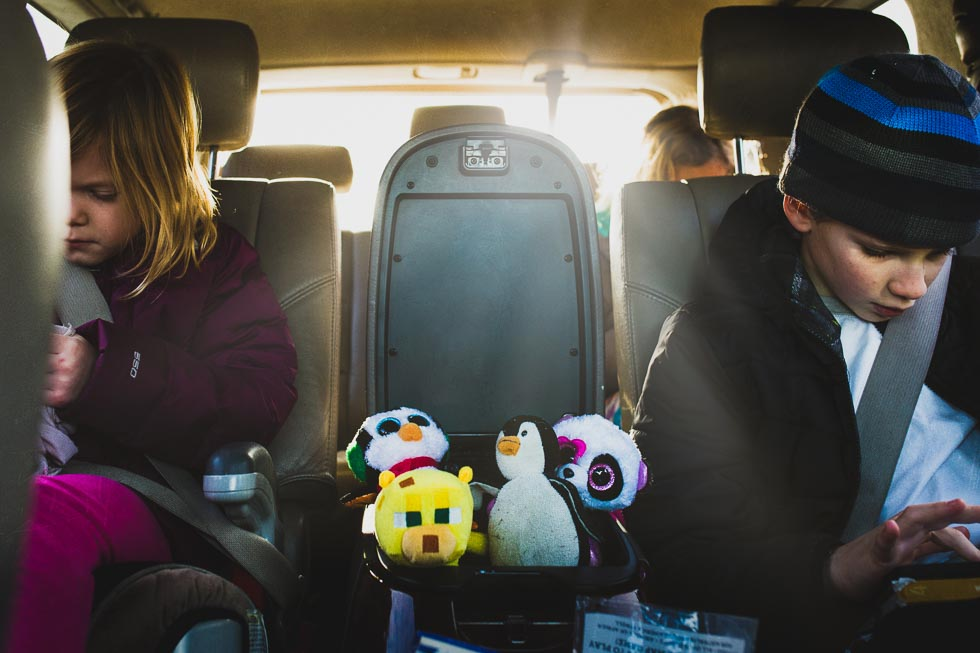 Children and their colorful stuffed animals riding int the backseat of a sunlit car on a road trip.