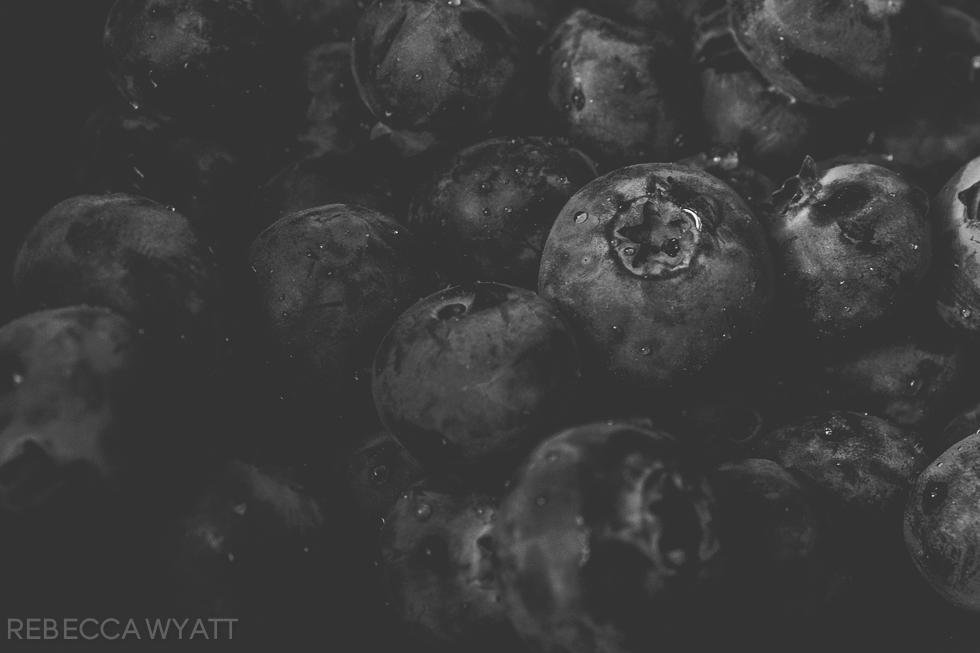 365-2 u[date blueberries-20