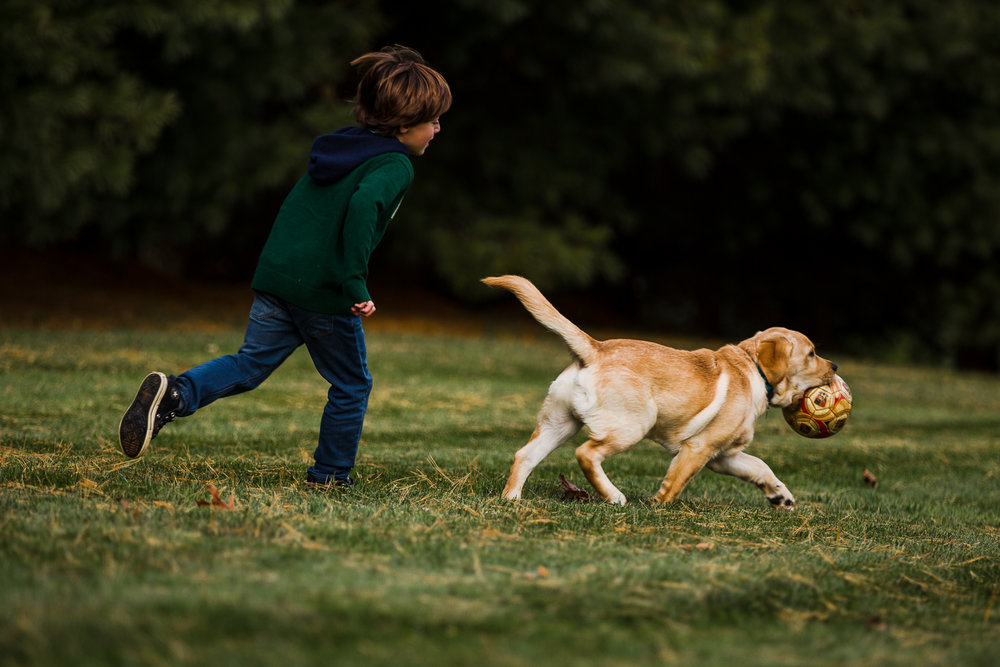 young boy throwing a ball with dog-9.jpg