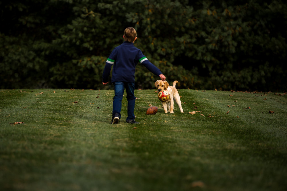 young boy throwing a ball with dog-10.jpg