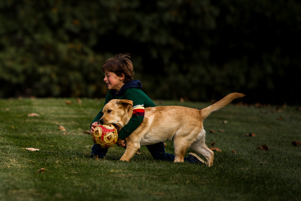 young boy throwing a ball with dog-11.jpg