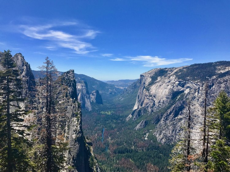 View of Yosemite Valley, Photo by Cam Rickard