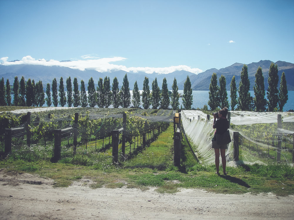 One common theme in Arielle's memories: capturing the beauty of New Zealand.