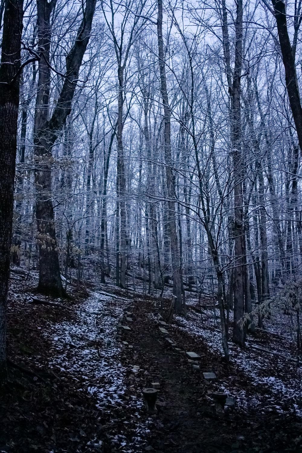 Snow-03791.jpg