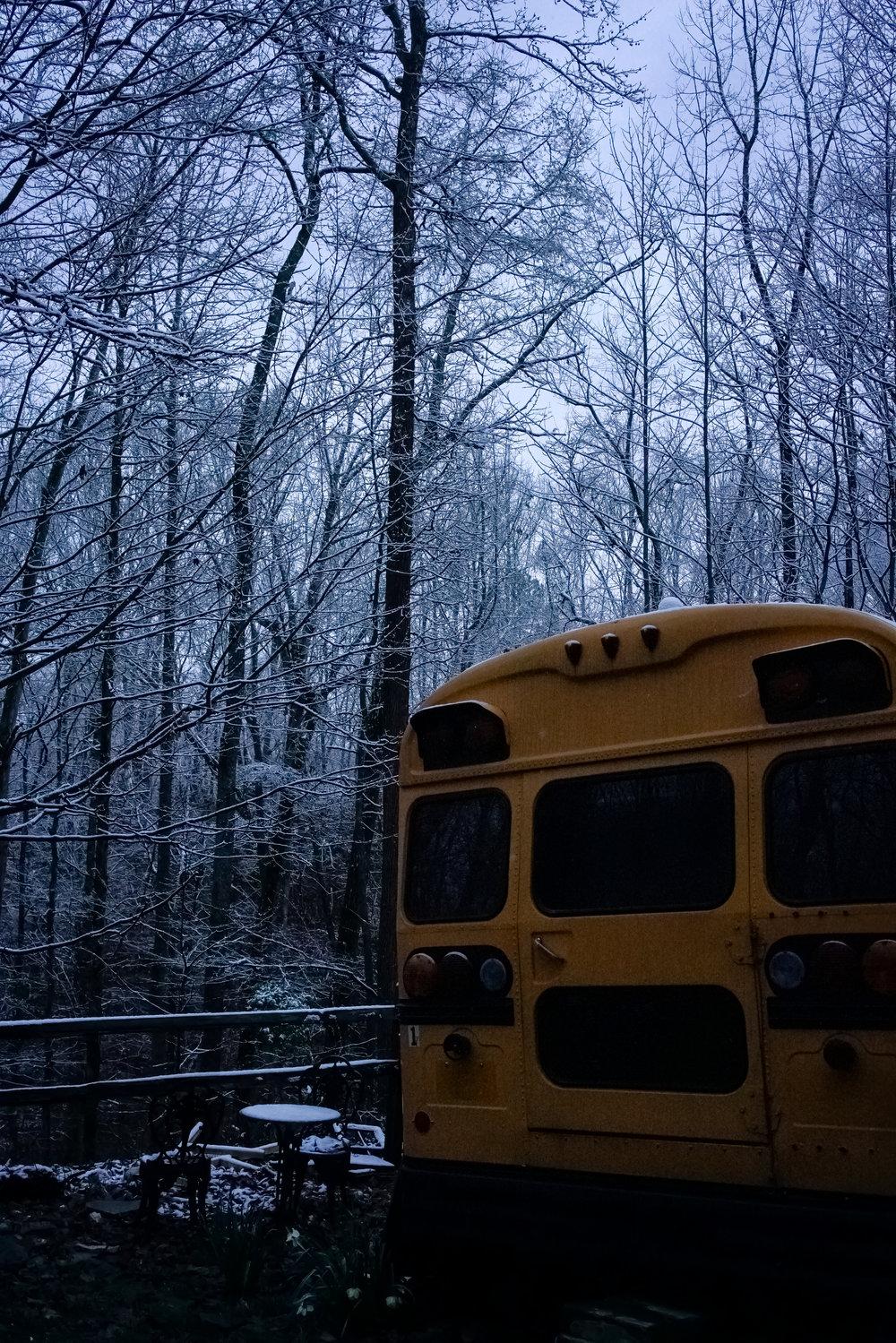 Snow-03789.jpg