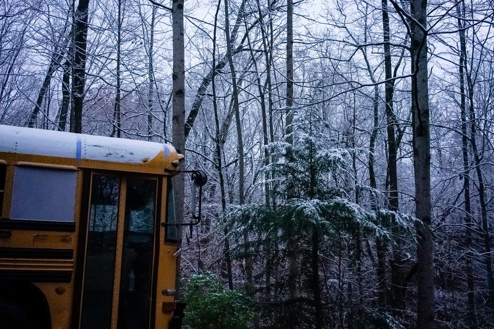 Snow-03803.jpg