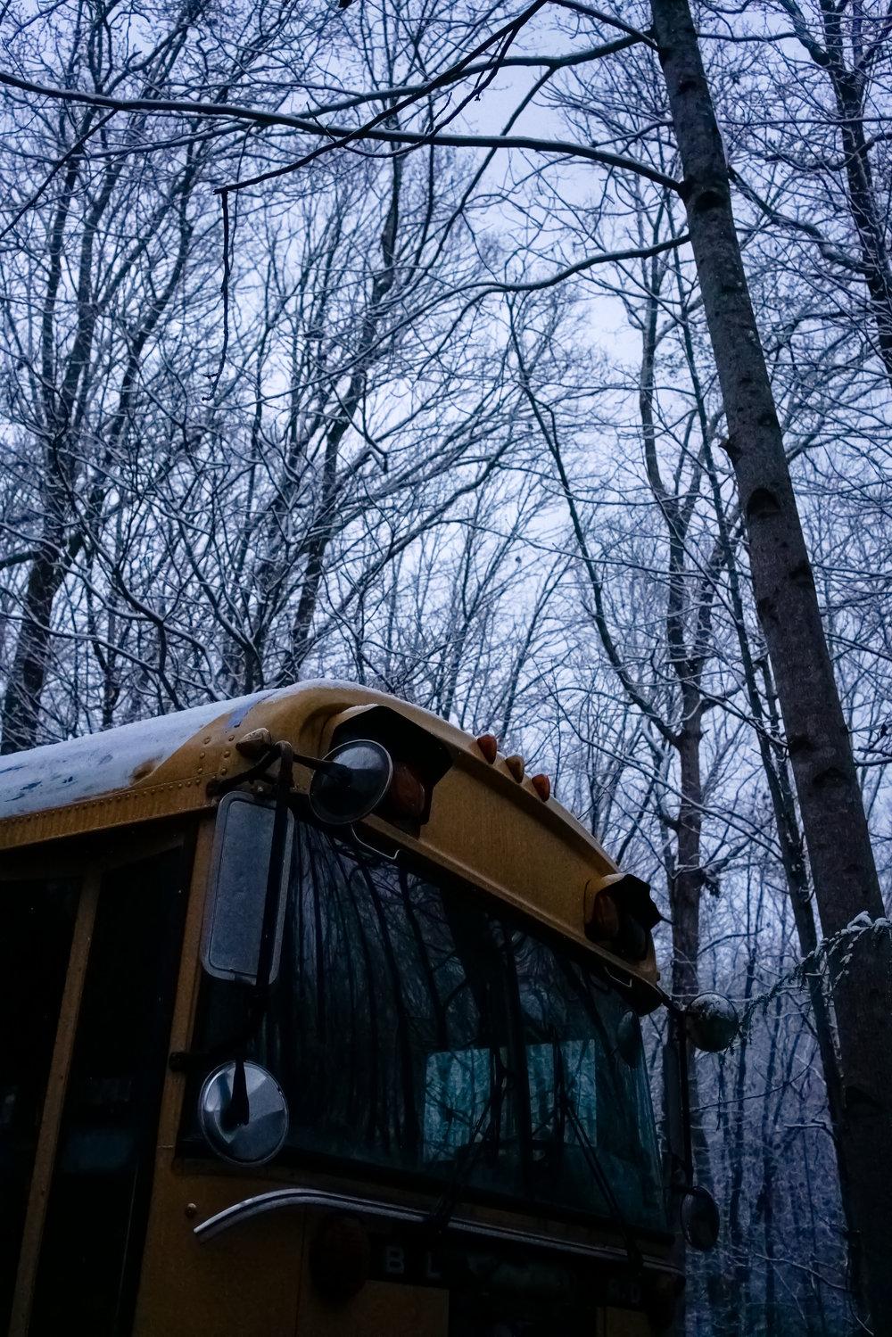 Snow-03802.jpg