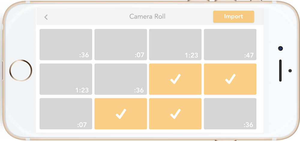 camera roll.png