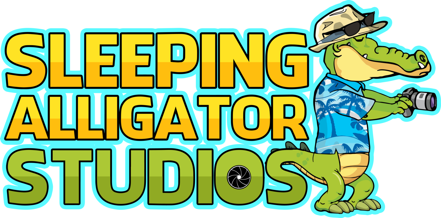 Sleeping Alligator Studios