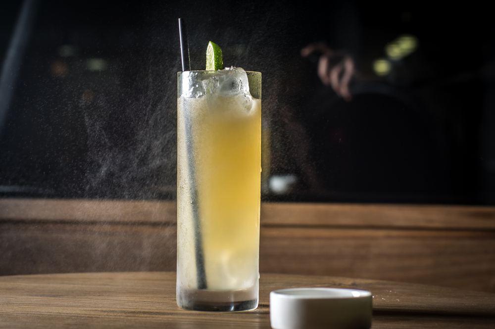 THE_GANDER_cocktails_Wagtouicz_04.jpg
