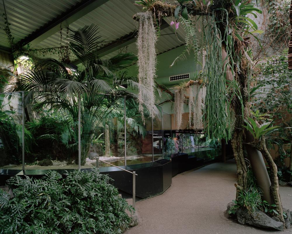 Tropenhaus I-3.jpg