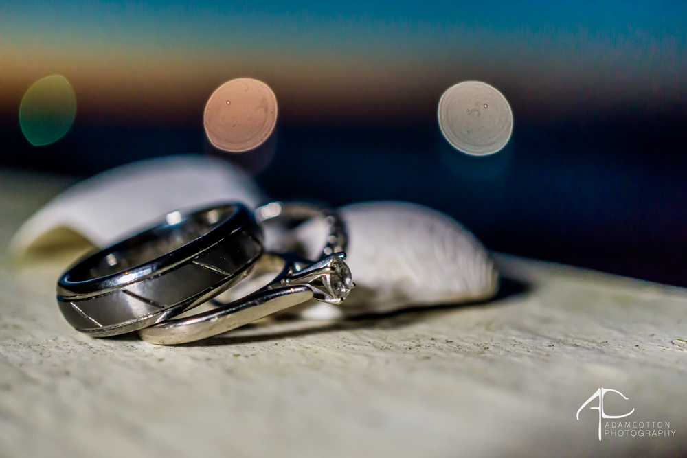 close up image of bride and groom wedding rings seashells pensacola photographer
