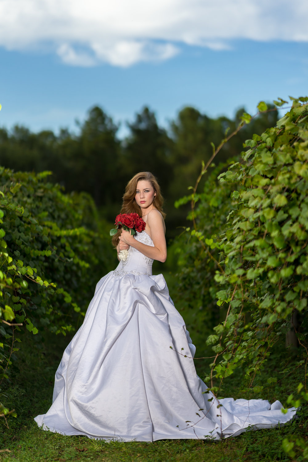 image of bride in green vineyard in wedding dress with bouquet by photographer adam cotton