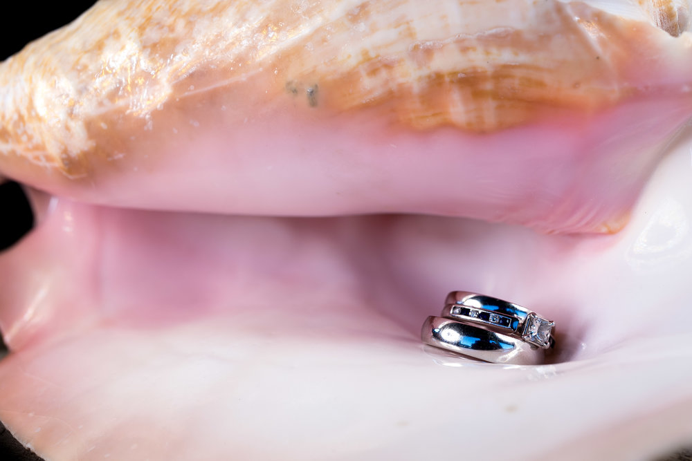 image of bride and groom wedding rings inside seashell