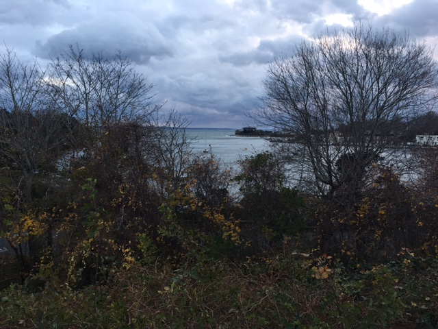 Little Harbor Woods Hole
