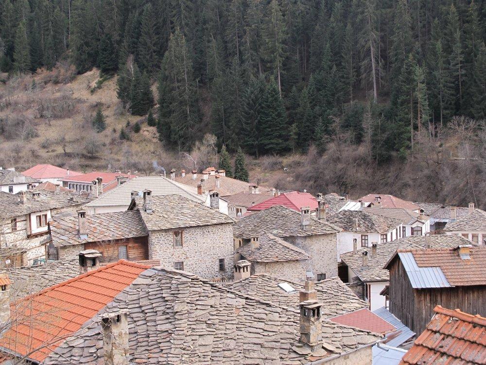 IMG_3078 Stone roofs in Shiroka Laka, Bulgaria. © Evelyn Weliver