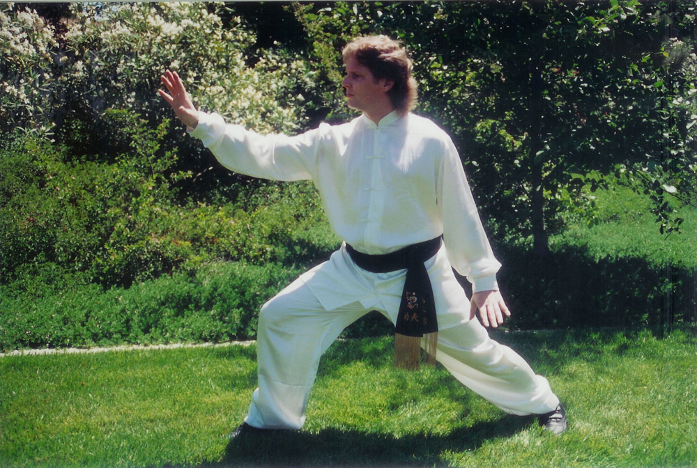 Chen Taiji Throw