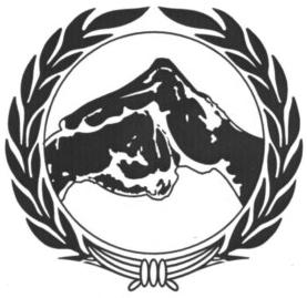 Hsing I Martial Arts Institute