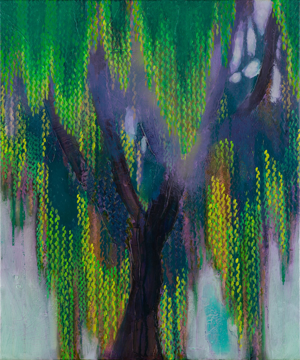 Green Willow  2018 oil on canvas 60x50cm