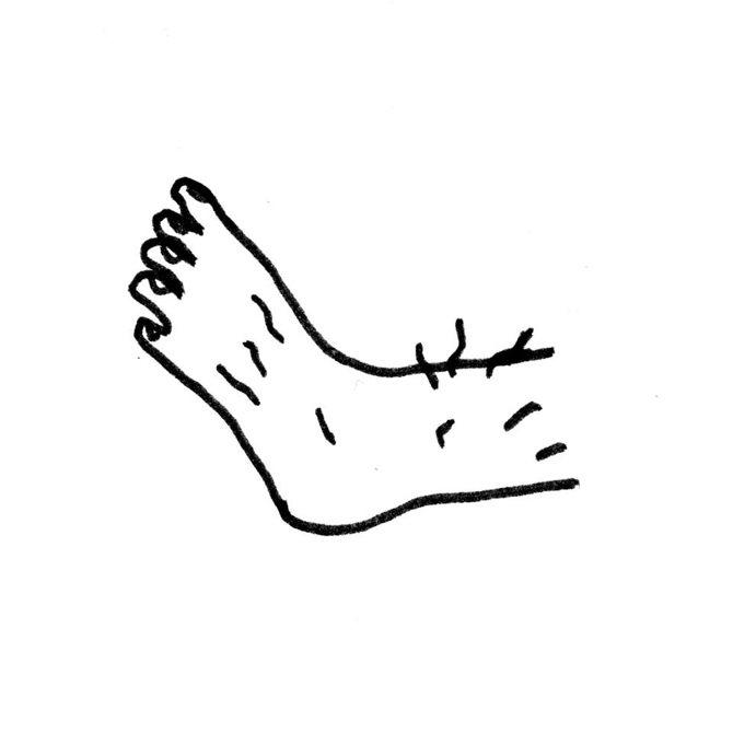Hairy Foot, 2015