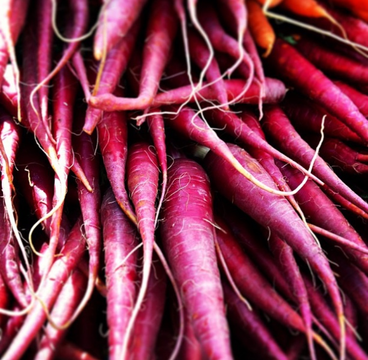 red carrots close up.jpg