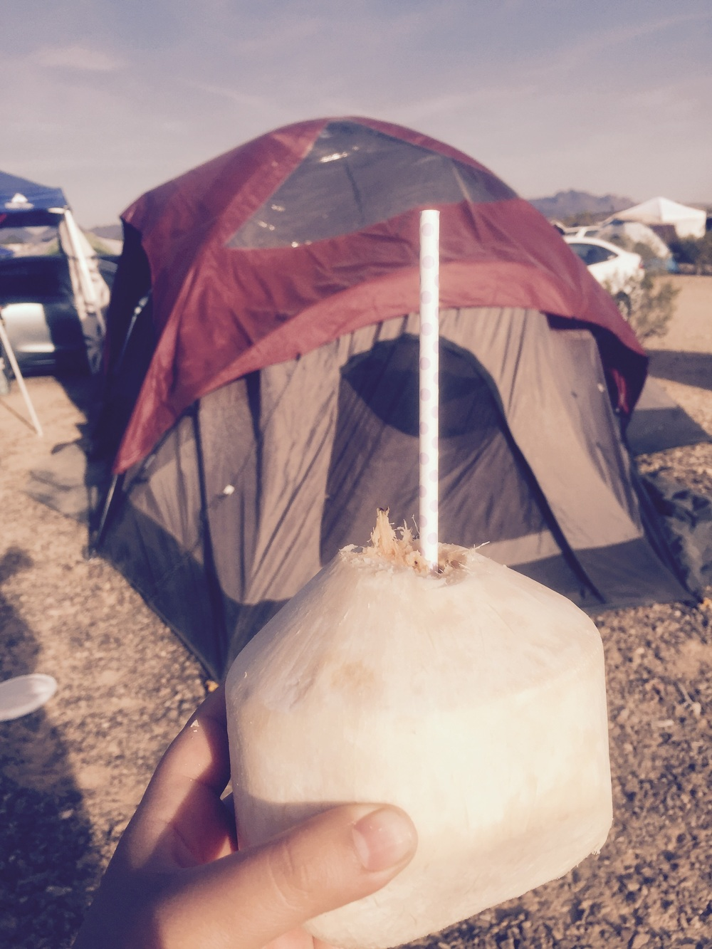 Fresh coconut water at the campsite.