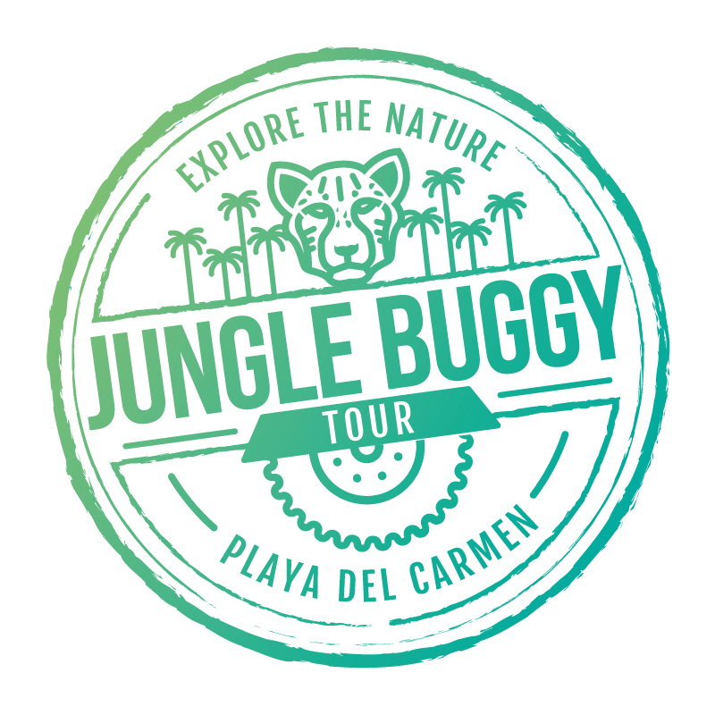 GET 10% OFF JUNGLE BUGGY TOUR FROM PLAYA DEL CARMEN