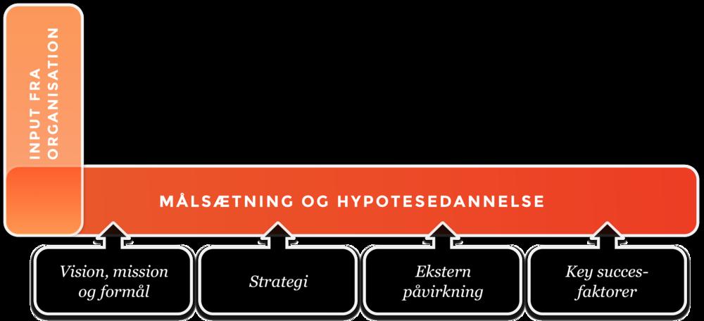 Målsætning og hypotese