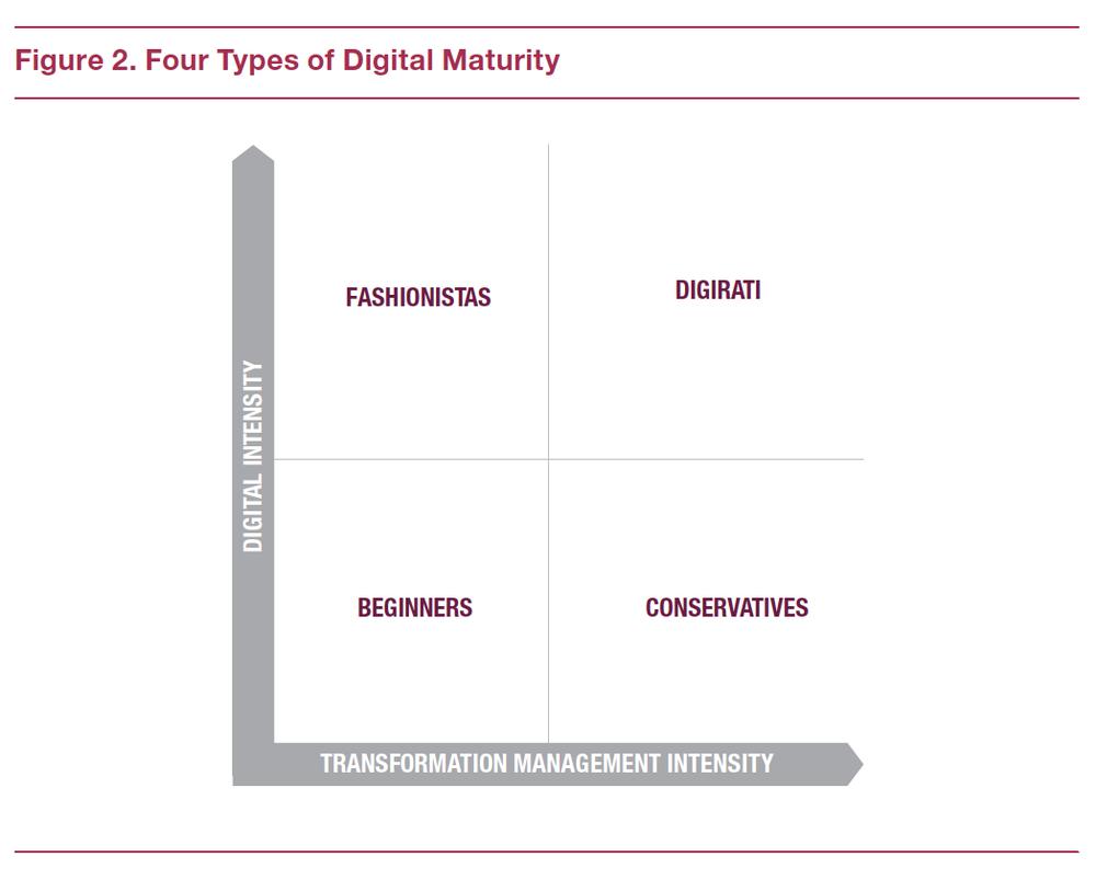 Digital Maturity Model.png