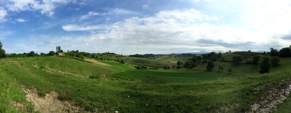 stunning hilly side in Slovenia