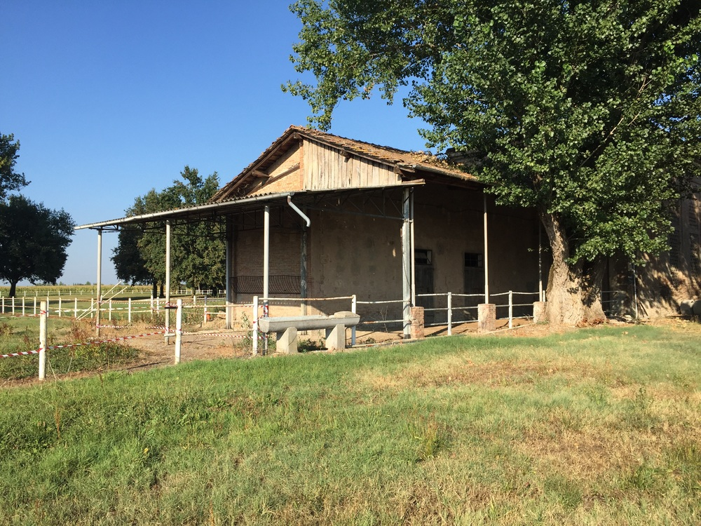 another building on the ranch