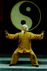 Master Lu Zi Jian 吕紫剑