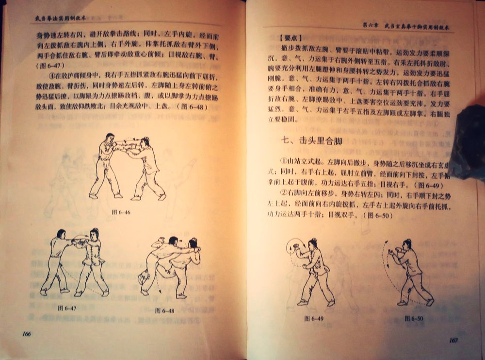 Martial applications from Xuan Zhen Quan