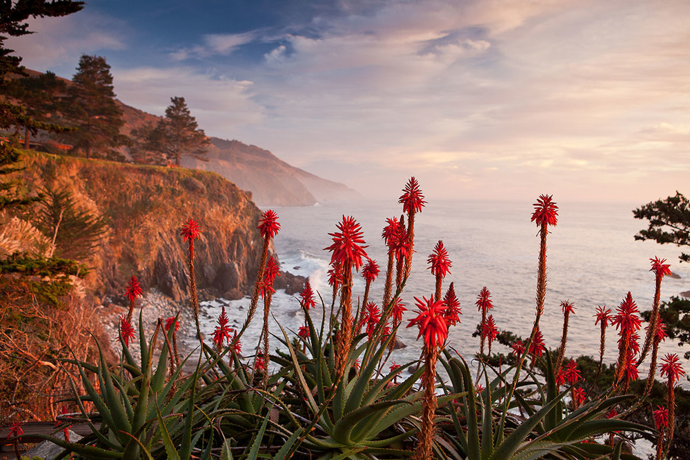 The Esalen Center for Theory and Resarch is located on the bluffs over looking at Big Sur, California.