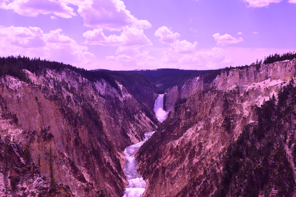 Yellowstone National Park (Summer Only)