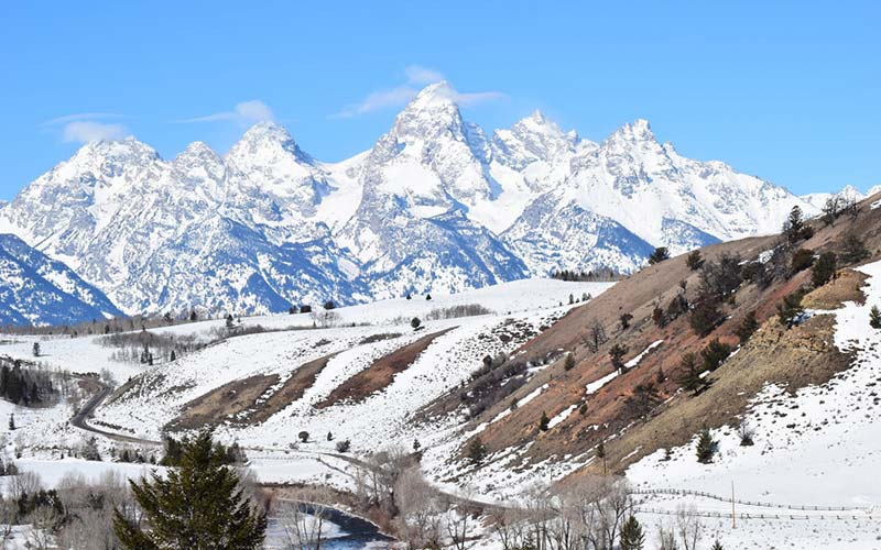 Grand Teton National Park Tours