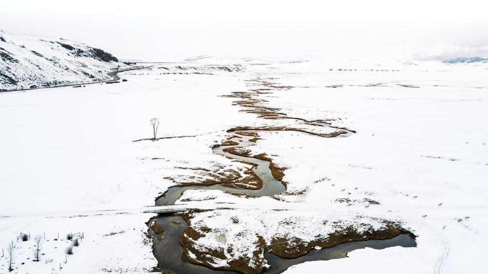 national elk refuge drone photo.jpg