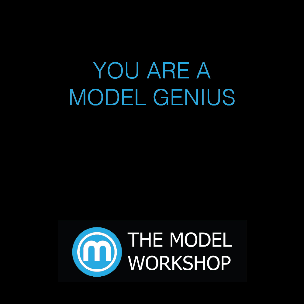 YOU ARE A MODEL GENIUS
