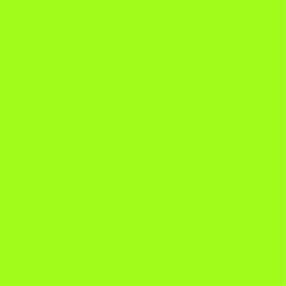 41. Conifer