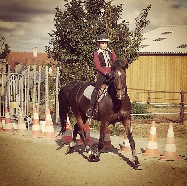#harasdelukos #horse #dressage #equitation #equestrian #ribayazdelukos #cavalier #cheval #elevage #insta #children