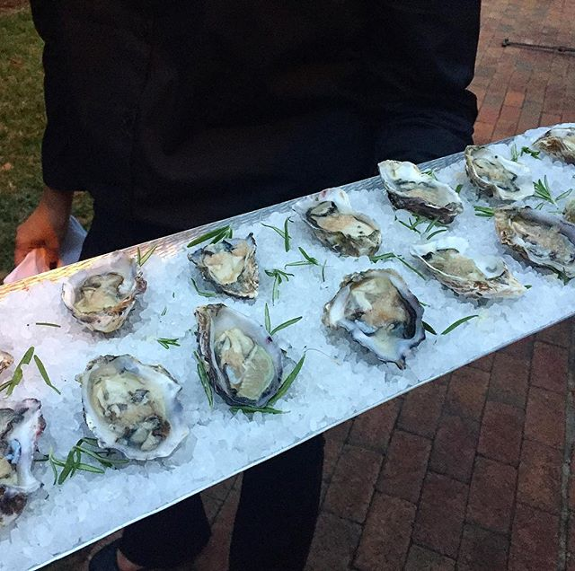 Oyster season y'all. #frcustomcatering #cltcatering #cateringclt #newzealandoysters #seatotable