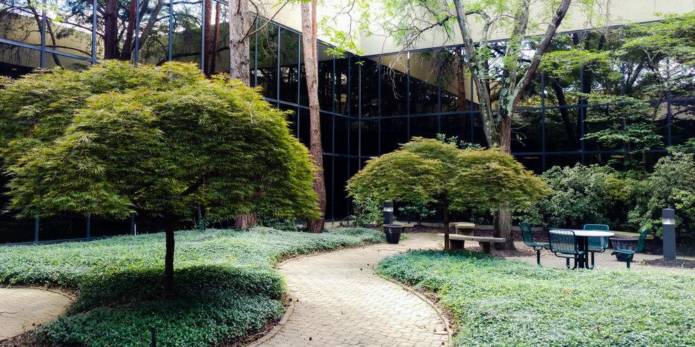 3.courtyard.jpg