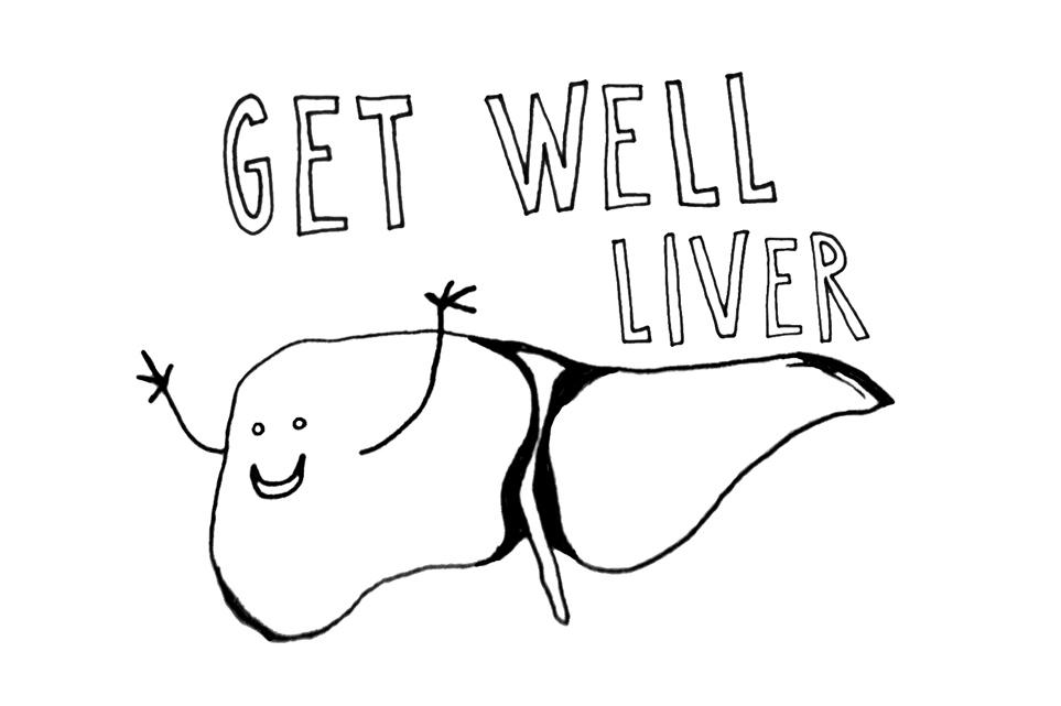 Liver1.jpg