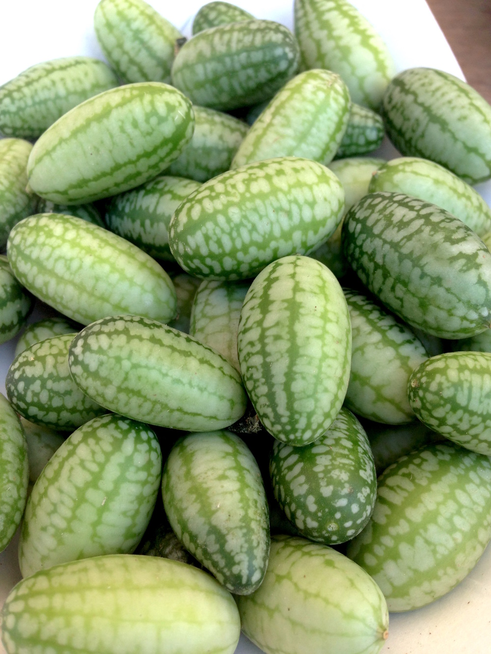 Mini watermelon cucumbers from the delightful and magical  Ojai Farmers Market