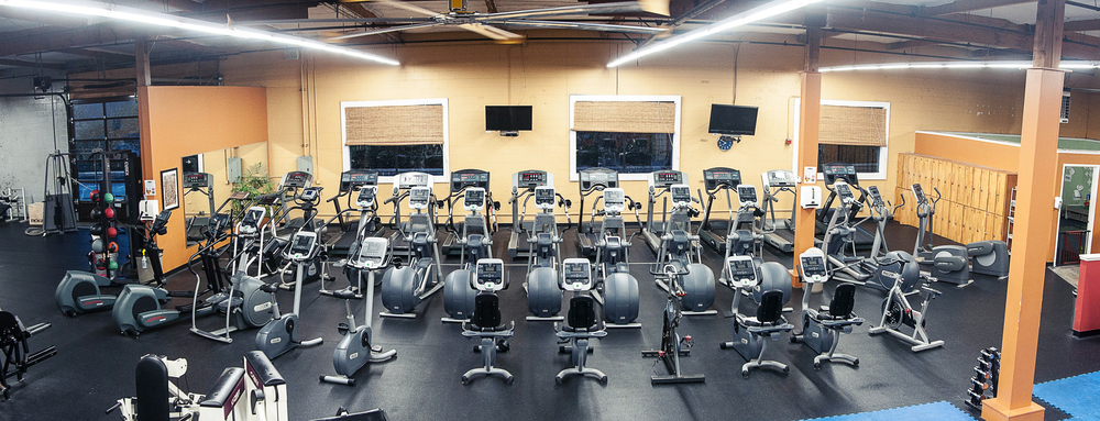 Cardio Area - Variety of Stair Steppers and EllipticalsTreadmillsStationary Cycles