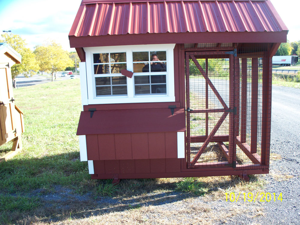 amish made coop for sale